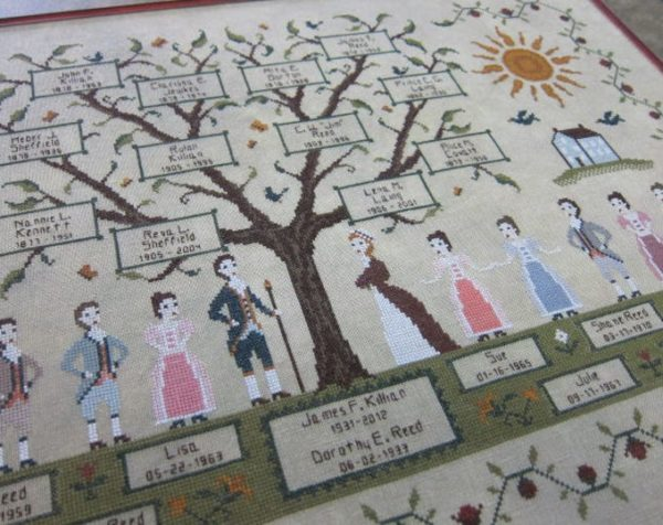 Willow Hill Samplings My Family Tree
